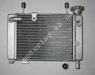 Радиатор охлаждения MUSSTANG MT200/250-1(MUS)