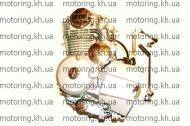 Двигатель 110 СС Delta (MOD original)