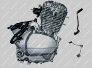 Двигатель CG150 Viper V150A STREET