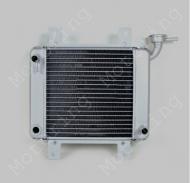 Радиатор охлаждения трицикл MUSSTANG MT150/250-4V (ORIGINAL)