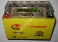 АКБ 12 v 9,5ah гелевый желтый с индикатором