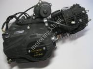 Двигатель Delta/Alpha 110 cc VIP