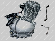Двигатель CG150 GEON PANTERA